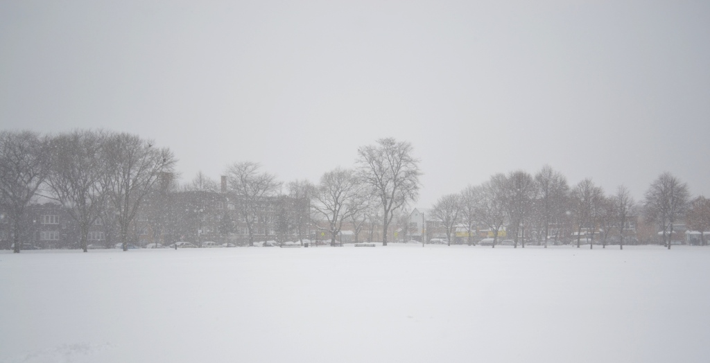 Koz Park during a winter storm.