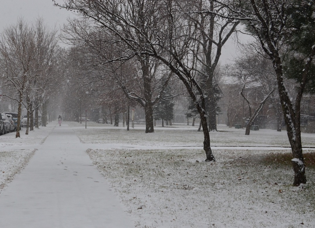 Kosciuszko Park in winter | Photo: Jazmin Medrano